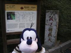 グーちゃん、伊東合宿へ行く!(江ノ島の悲劇編)