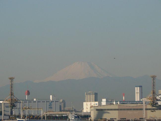 羽田空港を何度か利用しているうちに、空気が澄んだ晴れの日には富士山が綺麗に見えることに気づきました。それなら、他の湾岸でも富士山の見える場所があるはず。<br /><br />富士山と羽田を結んだ線を伸ばすと千葉県になってしまうので、都内の湾岸で東の方にある新木場へ行って探すことにしました。<br /><br />今回の移動手段は、都営バスの23区内一日乗車券(大人500円)。バス乗車時に購入し、あとは乗車の時に運転手に見せるだけで一日乗り放題です。1回の運賃が200円ですから、3回乗れば元が取れる計算です。<br />