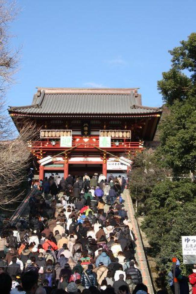 新年明けましておめでとうございます。<br />2009年のお正月、神奈川は穏やかな天気に恵まれました。<br />お正月休みの最終日、混雑覚悟で鶴岡八幡宮へ初詣と手斧始式を見に出掛けました。<br /><br />手斧(ちょうな)始式は、治承4年(1180)鎌倉の地を踏んだ源頼朝が岩清水八幡宮を勧請して本宮を創建した際に、船から上げられた材木を運んで木造りしたのに因む神事です。<br />二の鳥居から木遣り音頭で材木を下拝殿(舞殿)の前庭に運び、神職の祭儀に続いて烏帽子直垂の姿の大工職が金の手斧を振り、検尺、鋸引、墨打、手斧、遺かんなの順で木造りの作法を行う古式に則った行事です。