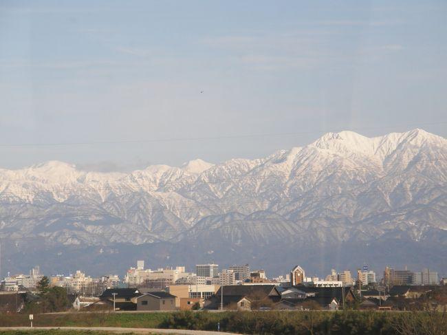 高山から富山へ移動。<br /><br />この日は富山で宿泊です。<br /><br />途中少し雪は残っていましたがこんなに少ないなんて!