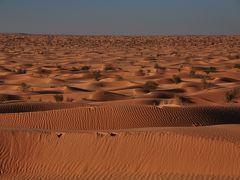 2008冬マグレブ旅行 Vol.4~砂漠クサールギレンへ・・・