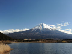 富士山・田貫湖から