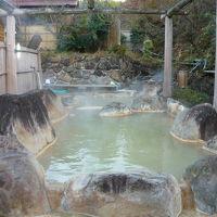 ラムネ温泉 仙寿の里温泉