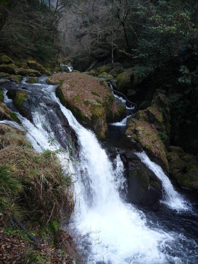 今回の旅行の最後の目的地である菊池渓谷にやって来ました!<br />日本の滝百選「四十三万滝」を含む滝群と美しい渓谷があるというので、とても楽しみにしていました。<br />【その19】では、往路をご紹介します。<br />※「四十三万滝」は復路に含めました。