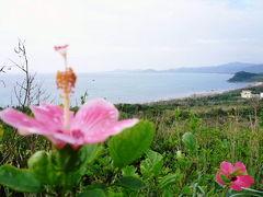 2008 沖縄 石垣島・黒島