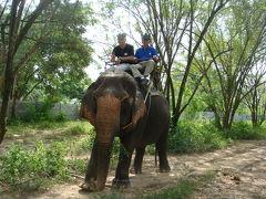 象に乗ったぞー!!JALビジネスで行く、今年3度目のタイ旅行 悪運の強さは日本一