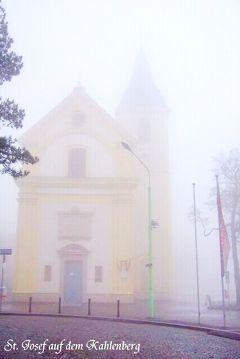 ウィーンのお散歩4 霧のカーレンベルク - コベンツル - グリンツィング+a