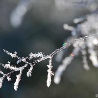 遭難、凍死寸前。冬の高ボッチ高原、死の彷徨