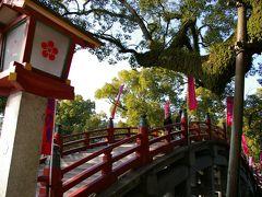 2009冬 九州の旅 太宰府天満宮で初詣(遅すぎる)