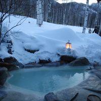 冬の白骨温泉・温泉三昧の旅