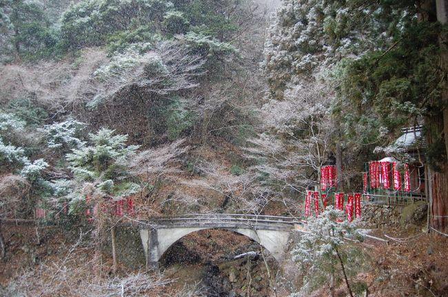 1月の寒い中、初詣も兼ねて会社の仲間(かめさん会)で大山詣をしてきた。生憎の天気で雪まで降り苦労したが、久しぶりの大山を楽しむ事が出来た。
