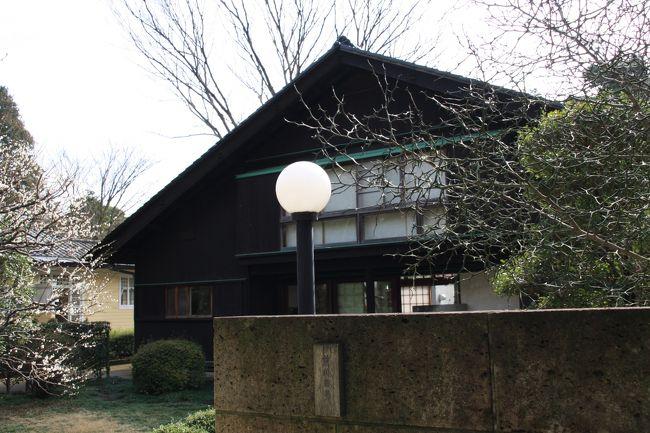 久しぶりに雨のあがった土曜の朝、中央線に乗って伊東忠太の作品である一橋大学のキャンパスを散策してきましたが、帰りに武蔵小金井で途中下車し、「江戸東京たてもの園」に行ってきました。<br />ここを訪れるのは2年ぶり。今回の目的は、隣接の小金井公園の梅と現在開催中の企画展「建物のカケラ」そして私の大好きな建物をじっくり見ること。<br />そんな中でも、もう一度じっくり見てみたい建物がこれ、建築家「前川國男邸」でした。<br />昨年、彼の師匠のル・コルビュジエが日本に残した唯一の作品である上野の国立西洋美術館が「ル・コルビュジエの建築と都市計画」として世界遺産の暫定リストに登録され話題になりました。<br />この国立西洋美術館の実施設計を手掛けたのが、彼の弟子である前川國男でした。<br />そんな日本を代表する建築家の家はこんな建物でした。
