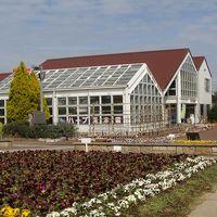 長久保都市緑化植物園