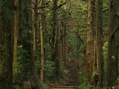 「熊野古道 大門坂」 古に思いを馳せて那智大社、那智の滝 /和歌山県東牟婁郡那智勝浦町