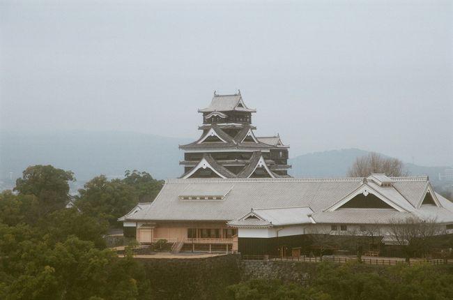 なんか天気が良くなって暑いくらいに。<br />さあ、熊本城に登城です。