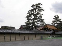 京都御苑でバードウォッチング [2009](1)