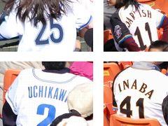 ハマスタにも侍JAPANがいた?プロ野球オープン戦【横浜VS北海道日本ハム】