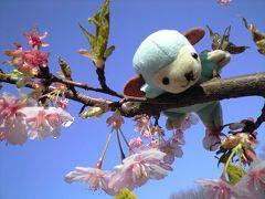 ウメ、昭和記念公園に行く