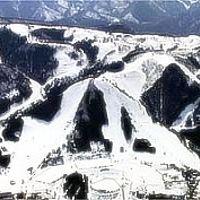 1990年 おおわに国体 in 青森県 大鰐温泉スキー場