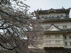 小田原 桜まつり