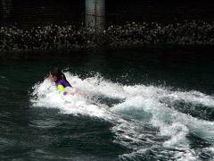 03.伊豆三津(いずみと)シーパラダイス 海に棲む生き物たち  イルカの海のバンドウイルカのショー