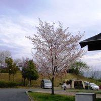 花見だ、キャンプだ。家族de讃岐まんのう公園の春休み'09 1日目