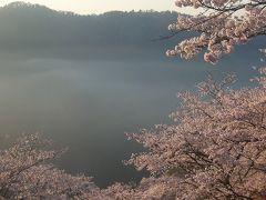晴れの国 岡山(桜の三休公園)