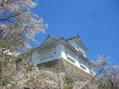晴れの国 岡山(桜の鶴山公園・春爛漫~♪)