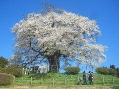 晴れの国 岡山(桜の岡山 2009)