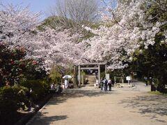2009年 春の鎌倉を歩く、頼朝と義経