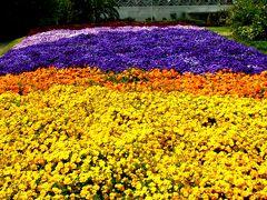 千葉市花の美術館を訪ねて ☆チューリップフェア開催中に
