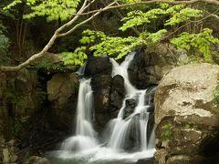 滝メグラーが行く20 新緑美しい尼ン滝 兵庫県三田市