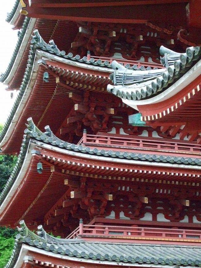今回のツーリング!帰りに笠岡の干拓地の菜の花畑〜福山城〜明王院〜草戸稲荷と訪れました。
