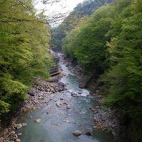 花と新緑の群馬路~八ッ場ダム建設予定地・川原湯温泉と吾妻渓谷