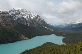 黄葉のカナディアンロッキー ドライブ旅行記 【5】様々な表情の氷河湖たち