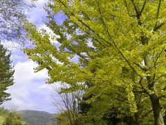 北茨城巡り2007。 「花園神社」