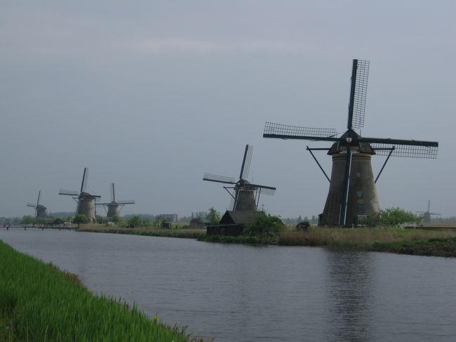☆遂にきました、キンデルダイクの風車群!<br /> <br /> 今回の旅行でキューケンホフ公園の次に楽しみにしていた場所。なんといっても世界遺産ですからね〜。<br />19基もの風車をいっぺんに見られるのはオランダでもここだけ。楽しみだわ〜♪<br /> <br /> 期待を胸にいざ足を踏み込んでみると、そこには、子供の頃より思い描いていたとおりのオランダの風景が、静かに静かにたたずんでいました。<br />その風景はどこか懐かしく、愛おしくもありました。<br />ひとつ々の風車を抱きしめたい、そんな気持ちが込み上げてきました。<br />長い間、水と闘ってきたオランダの歴史を感じたからでょうか…。<br /><br />旅行行程:<br /><br />  【ハーグ】⇒【デルフト】⇒【キンデルダイク】⇒【アントワープ】⇒<br />      <br /> ⇒【ゲント】⇒【ブルージュ】⇒【ブリュッセル】⇒【アルデンヌ地方】⇒<br />      <br /> ⇒【デュルビュイ】⇒【マーストリヒト】⇒【トールン】⇒【ユトレヒト】⇒<br />      <br /> ⇒【アールスメア】⇒【キューケンホフ】⇒【アムステルダム】<br /><br />旅行会社:J○B旅物語<br />旅行日数:7泊9日<br />旅行代金:\239,000<br />燃油サーチャージ:\15,700<br />現地空港税:\12,510<br />国内空港使用料:\2,650<br />参加人数:29名<br />添乗員:1名<br />
