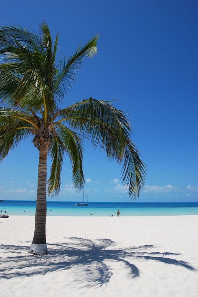 新型インフルエンザ・・・安全を考慮して日本の外務省から渡航延期の警報が出てしまいました・・・。そんな中でカリブ海のビーチリゾート「カンクン」もメキシコ国内にある為、日本からのパッケージツアーは6月末日まで販売中止・・・。実際、カンクンの状況は??? 旅行者はニュースを見て渡航をキャンセル・・・観光客は激減・・・でも実際、カンクンの中では新型インフルエンザの感染の影響は無く、通常の生活をしております。普段ならこんな素晴らしいビーチは当然、沢山の人でにぎわっていますが今ならビーチは貸し切り状態!!! 静かに最高のビーチをお楽しみ頂けます。こんな状況でも個人で航空券を手配して観光客が来ております。ホテルの宿泊料金は超破格!!! もちろん世界遺産のマヤ遺跡も空いていてスムーズに楽しんでおります。