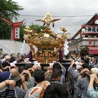 2009年三社祭