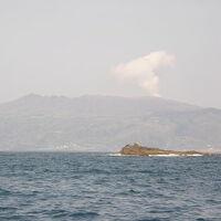 三宅島でバードウォッチング [2009](1)