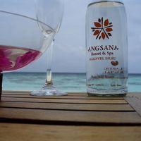 ANGSANA2009