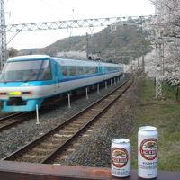 2009.04.08山中渓駅で花見+鉄分吸収