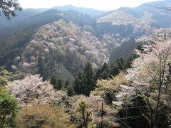 「桜で華やぐ古都・京都と朝一番で吉野山を歩く旅」~2日目奈良・吉野~ 【作成中】