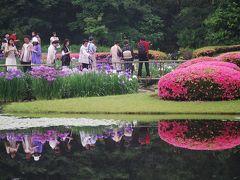 初夏を彩る菖蒲の花を見に皇居・東御苑を訪問?二の丸庭園