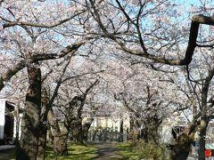 日本の旅 東北・中部地方を歩く JR糸魚川駅周辺