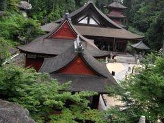 2009紫陽花シリーズ(3)長命寺