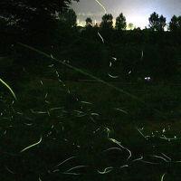 車で長野 ★辰野のホタル 松尾峡・ほたる童謡公園