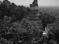 マヤ遺跡の最高峰 ティカル遺跡
