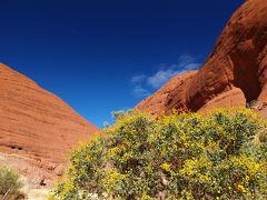 ウルルを見るぞ!Red Centreドライブ(2) ウルル・カタジュタ国立公園編 2009年7月