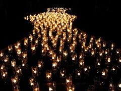 Japan  小平グリーンロード 灯りまつり